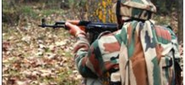Gunfight rages in Shopian orchards