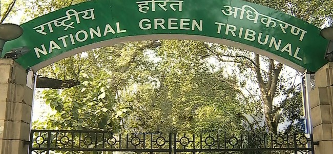Solid Waste Management: NGT's state panel seeks report from DCs