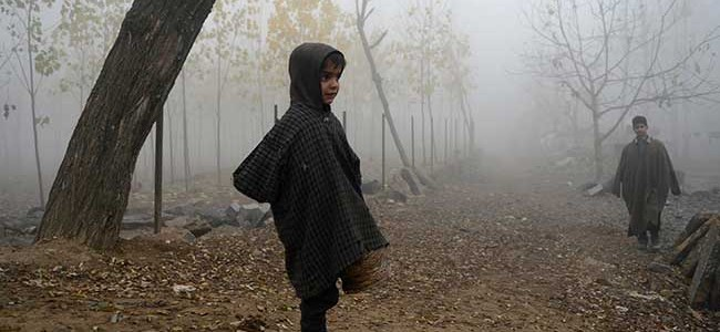 Respite from cold in Kashmir, Srinagar see low of minus 2.4 Deg Cel