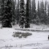 Weatherman issues advisory for heavy snowfall  in Kashmir from Jan 20 to 23
