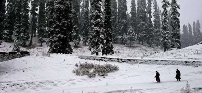 Higher reaches to witness moderate to heavy snow: weather advisory
