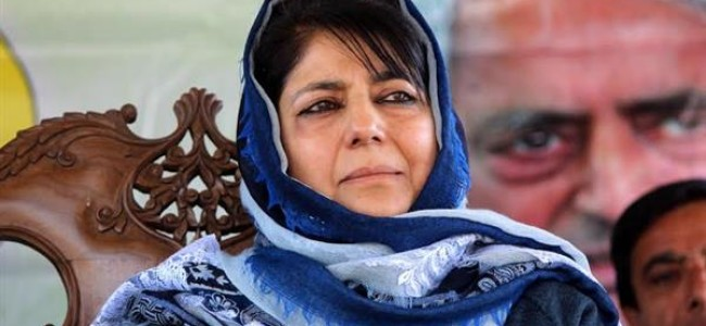 Mehbooba: Panchayat, ULB polls to empower JK's grassroots institutions