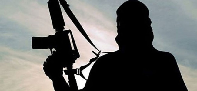 EXCLUSIVE: After Majid Khan, another militant returns home in South Kashmir, says Police
