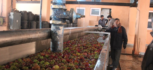 Employees of World Bank funded Apple concentrate plant Sopore, decry official apathy
