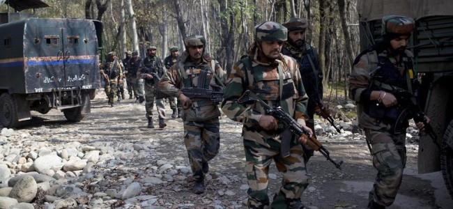 Forces launch nocturnal CASO in Samboora