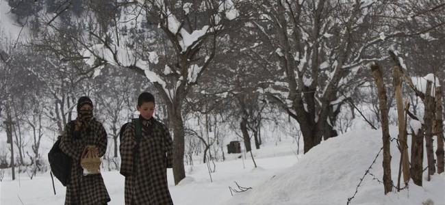At -6.1C, Srinagar records season's coldest night, Gulmarg freezes at -10.6C