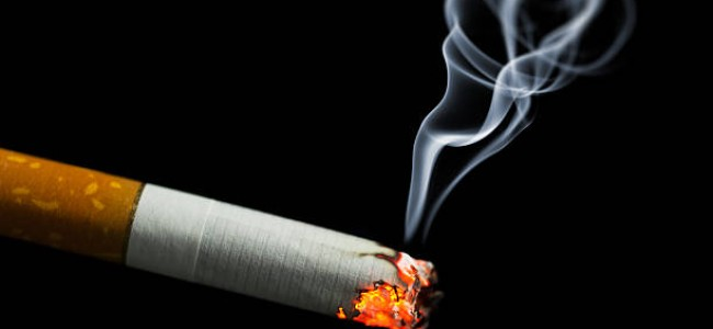 Tobacco consumption has declined by 2 to 3 percent in recent years: Govt