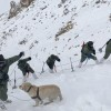Leh Avalanche: 2 More Civilian Bodies Recovered, 3 Still Missing