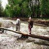 As govt fails to reconstruct bridge washed away by floods, Rathsuna Tral use poplar tree to cross Nallah
