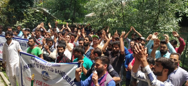 PDD, STD daily wagers protests in Ganderbal, demand disbursement of pending wages