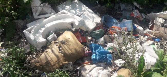 MC Kokernag fails to clear garbage, residents irritated
