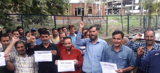 'Tried to force me into signing a document' says BDO assaulted by contractors in Pulwama, employees launch strike